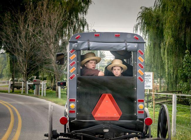 Amish Children Buggy Amish Country Amishcountry Lancaster County Pennsylvania Pennsylvania Amish Buggy Amish Life Culture EyeEm Best Shots Picoftheday Likeforlike L4l Bestoftheday Tagsforlikes VSCO EyeEm Gallery EyeEm Masterclass Follow Likes Follow4follow Instagood Like4like Followme