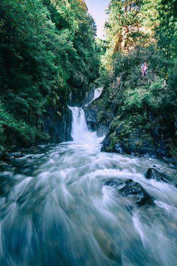 好久不见#男仔很忙# 上孟乡 尼康D810 男仔很忙 Waterfall Nature Beauty In Nature Motion Water Scenics River Tree EyeEm Ready