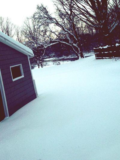 My beautiful backyard Salmonriver Enjoying Life First Eyeem Photo