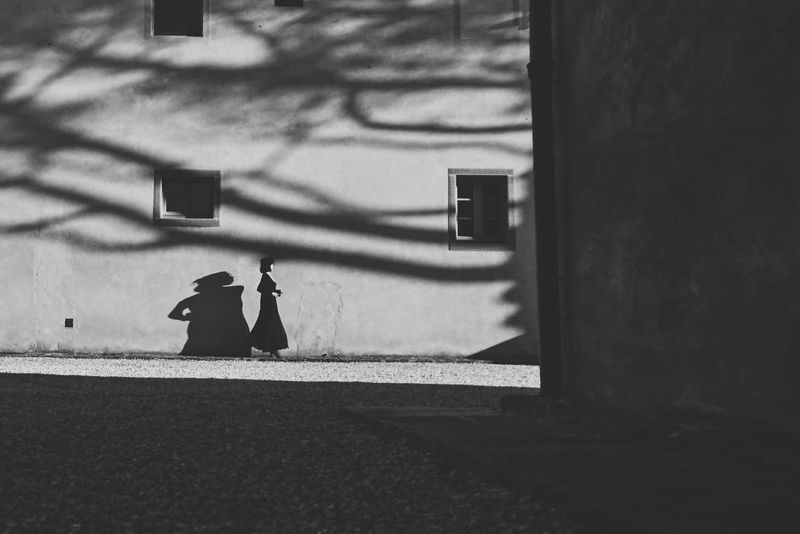 The Street Photographer - 2017 EyeEm Awards Rear View Real People Building Exterior Day Built Structure Outdoors Architecture One Person Men Sunlight Shadow Full Length City Bird People 2017 Eyeem Awards The Week On Eyem Light And Shadow Streetphotography Street Photography Street Fashion Girl Beauty