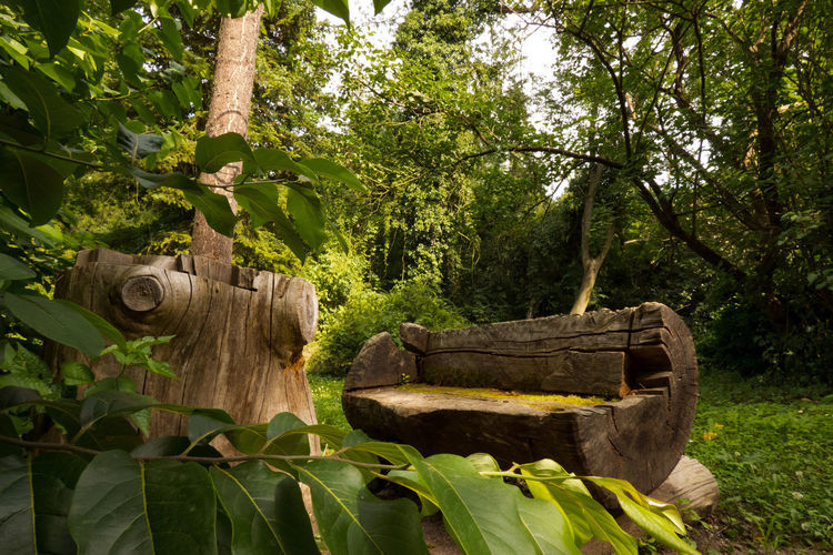 Wooden sculpture amidst trees in forest