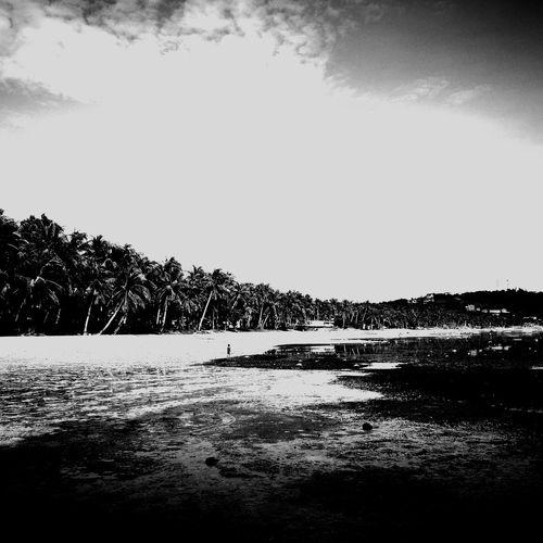Alone Boracay