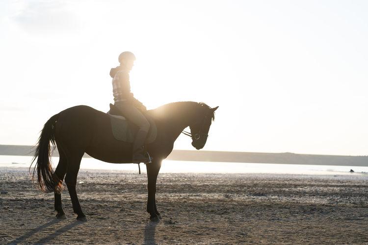 Man riding horse on beach against sky