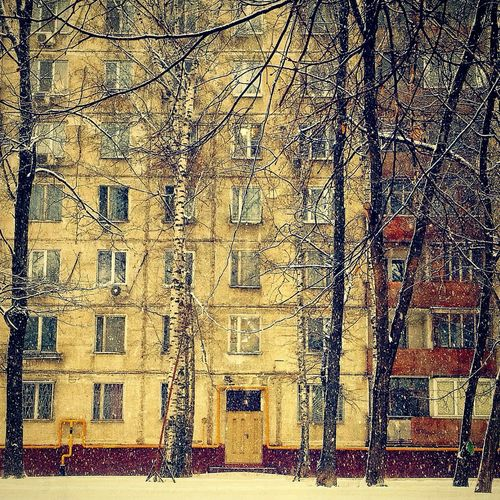 Melancholy in the city Architecture Bare Tree Block House Building Built Structure City Façade Gloomy Day Gloomy Weather Melancholic Cityscapes Outdoors Russia Season  Soviet Architecture Soviet Blocks Soviet Buildings Soviet Union Tree Trunk Winter