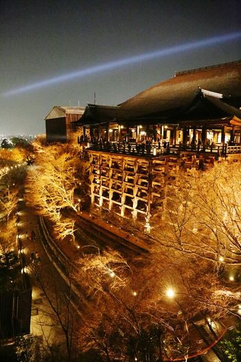 Kyoto Kyoto,japan Kyoto, Japan Illuminated Night City Tree Architecture Cityscape Built Structure No People Business Finance And Industry Outdoors Sky
