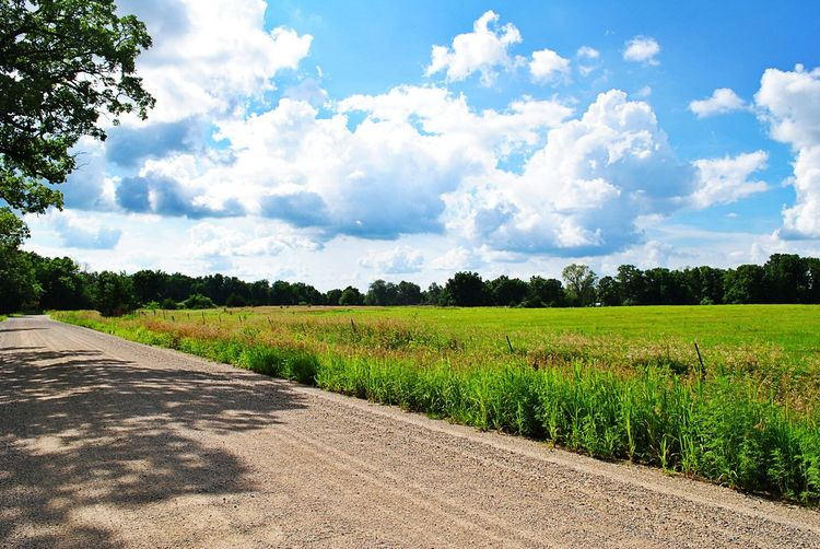 Country Country Road Landscape Summer Road Tripping Rural Scene Agriculture Tree Field Cereal Plant Crop  Farm Sky Landscape Cloud - Sky