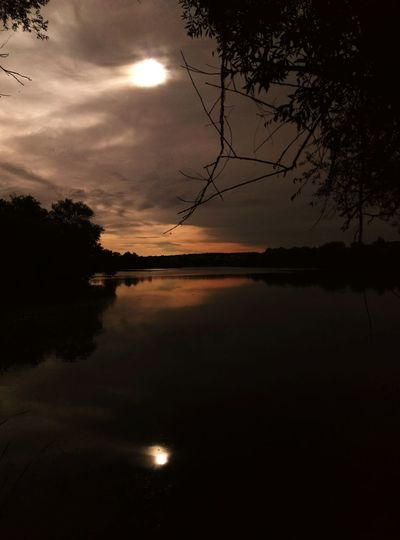 Reflection Tree Lake Water Nature Sky Landscape No People Outdoors Beauty In Nature Morning Sun Clouds And Sky Gloomy
