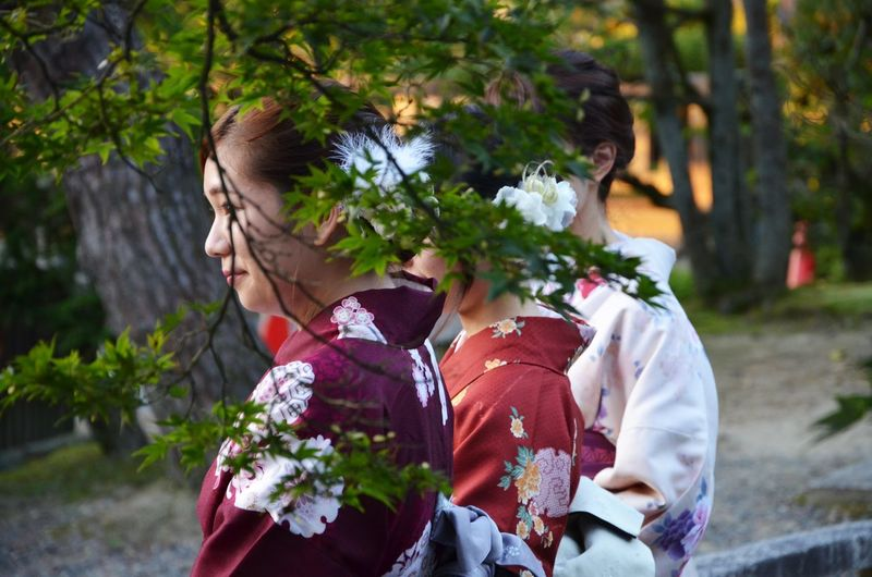Close-up Group Of Women Japanese Culture Japanese Style Japanese Women Kimono Portrait Of A Woman Traditional Clothing Traditional Costume Traditional Culture Ultimate Japan Snap a Stranger Women Around The World