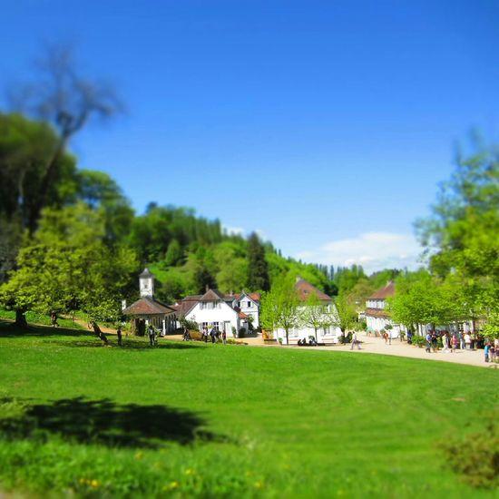 Staatspark Fürstenlager Travel Nature Wanderlust Entdecken