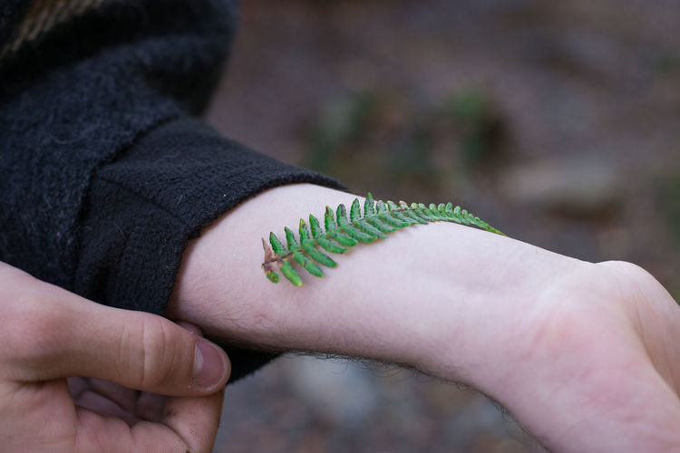 Abstract Arm Beauty In Nature Fern Nature Outdoors Person Surrealism Fine Art Photography