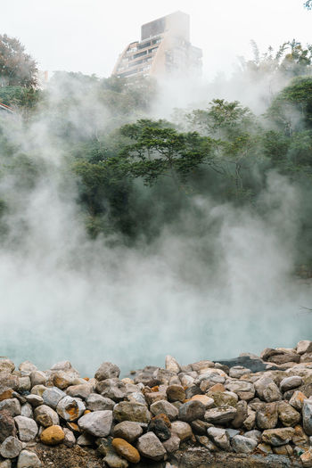 Hot spring in forest