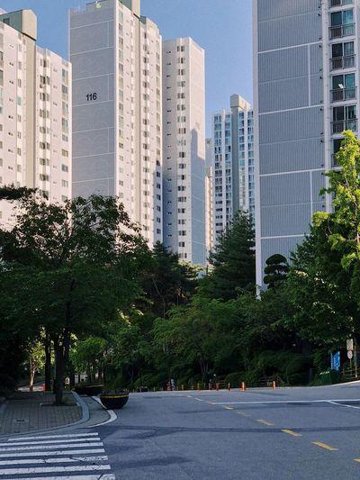 City Architecture Built Structure Building Exterior Plant Building Tree Residential District