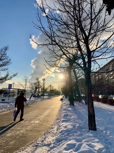 Snow Cold Temperature Winter Tree Plant Nature Day Covering Outdoors Russian Winter Russia Wintertime Winter Winter Wonderland Warm Clothing City One Person Street Moscow Moscow Life Sunlight Walking Sun