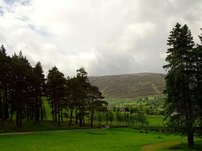 Tree Cloud - Sky Field Landscape Nature Beauty In Nature Rural Scene Freshness Scottish Highlands Scenics Scotland Highlands Tranquil Scene Tranquility EyeEm Gallery EyeEm Best Shots