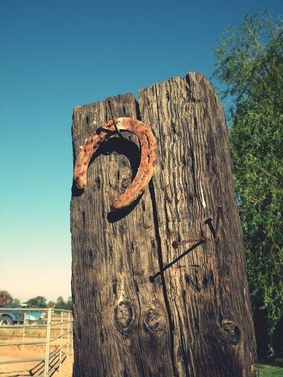 Horseshoe hanging on nail
