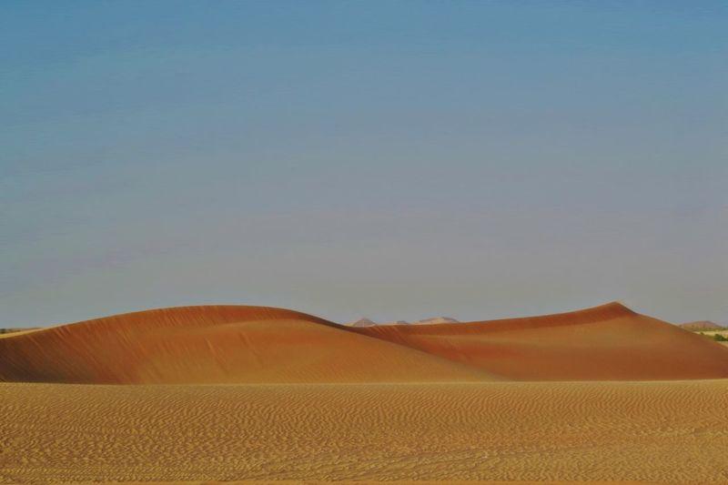 Desert in Abu Dhabi Naturelovers Dunes Nature Photography Abu Dhabi Deserts Around The World Desert Beauty Landscape Desert Land Scenics - Nature Tranquil Scene Climate Beauty In Nature Sand Dune Arid Climate Sky Sand Nature No People Clear Sky Non-urban Scene