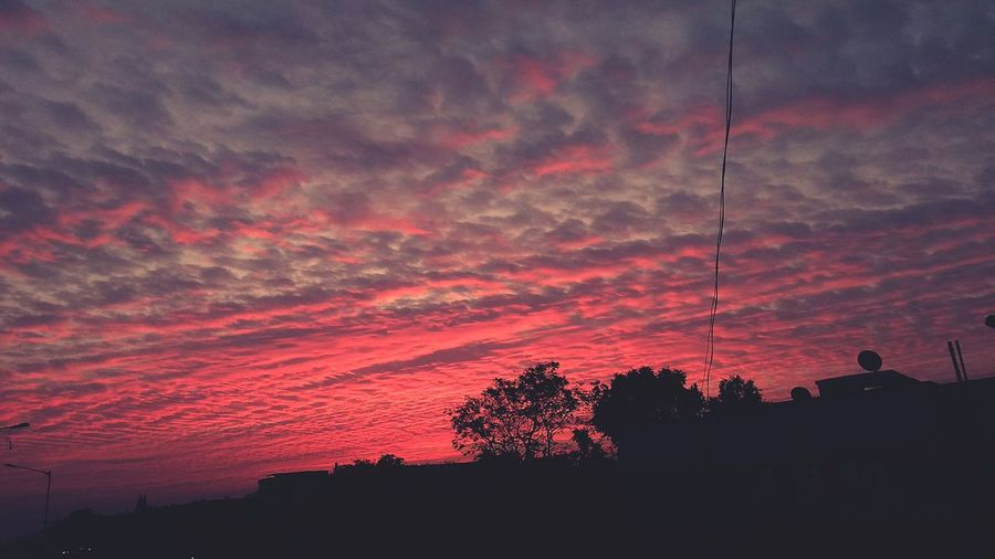 Sunrise EyeEm Selects Sunrise And Clouds Sunrise Silhouette Sunset Silhouette Low Angle View Tree Nature Sky Beauty In Nature Outdoors Cloud - Sky Scenics No People Night EyeEm Ready
