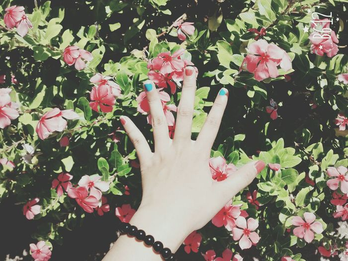 Hangingout Hands Colorful Flowers Colorful Nails Aroundme  First Eyeem Photo