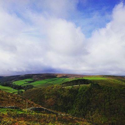 """Exmoor"" Exmoor Devon Countygate Countryside Cloudyday Fieldscene Fields Clouds Trees WoodLand Moorland Moors Devonlife Somerset Shotoftheday Springtime Spring"