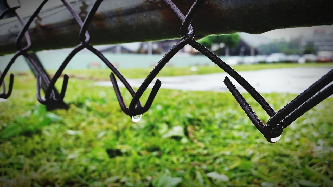 focus on foreground, metal, close-up, outdoors, drop, day, no people, nature, water, green color, growth, grass, beauty in nature