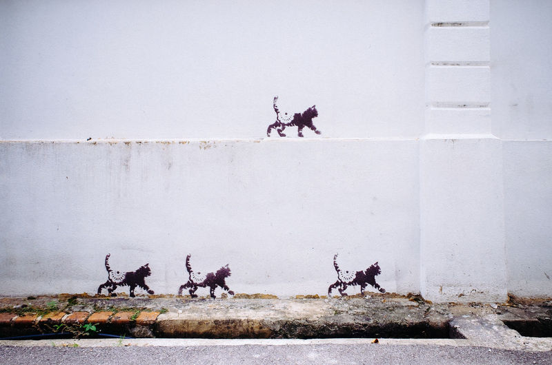 Street Art Mural in Georgetown. Penang or Georgetown are images of the beautiful street art all around town. Most of the well-known murals where commissioned by the Penang Municipal Council back in 2012 and were created by a Lithuanian artist called Ernest Zacharevic, which has now turned into a bit of a celebrity artist on the island. His street art project carries the name 'Mirrors George Town' and reflects the colorfulness, playfulness and energy of the town beautifully. Artist Artistic Beautiful Famous Georgetown Lithuania Local History Penang Art Bike Building Concept Corners Design Drawing Ernest Hostels Iron Sculpture Malaysia Mural Street Street Art Town Walked