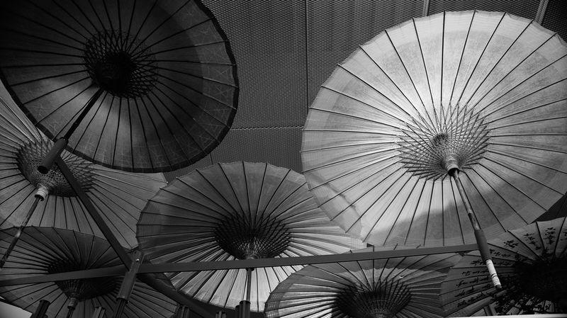 Black & White Blackandwhite Blancetnoir China Expo2015 Italy❤️ Juillet 2015 Milano