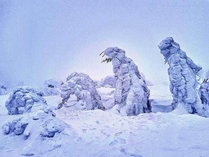 Snow Warm