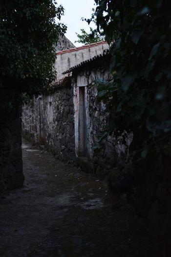 Aidomaggiore Sardinia Sardegna Italy