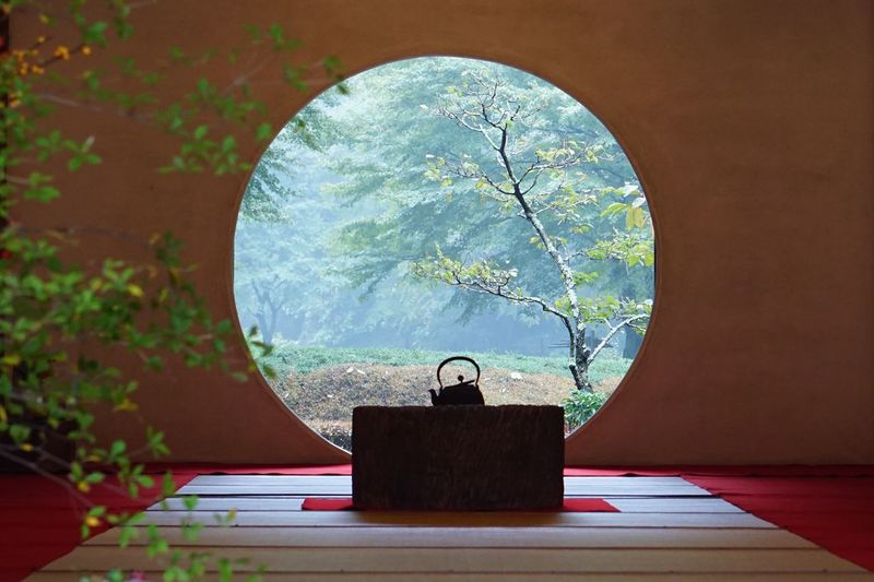 Kamakura Temple Garden Plant No People Table Day Outdoors Shape Circle Geometric Shape Space Art And Craft Pattern Silhouette