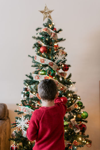 Rear view of boy with christmas tree