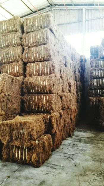 Coir fiber bales Textures And Surfaces Lines And Shapes Common Objects Green Nature Natural Materials Raw Materials