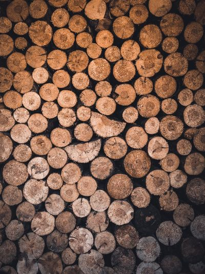 Cut. Full Frame Backgrounds Timber Wood Log Firewood No People Large Group Of Objects Abundance Lumber Industry Deforestation Pattern Textured  Forest Stack Wood - Material Repetition Tree Nature Brown EyeEmNewHere