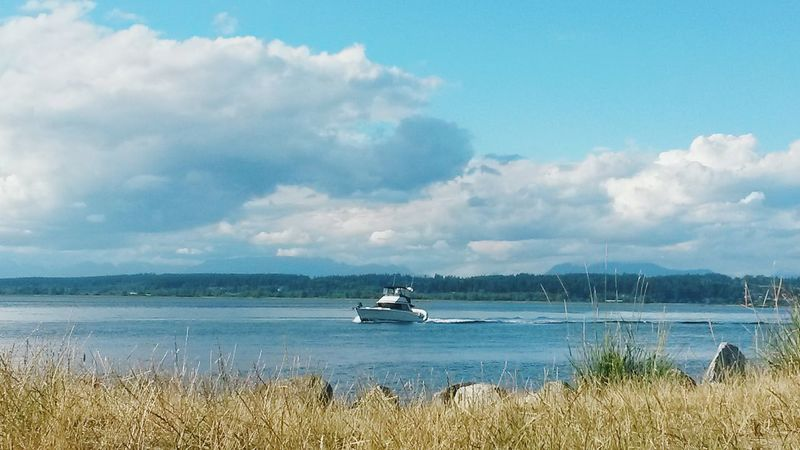 Boat Watching Boats Lakescape Drygrass Summer Summer Views Picnicday