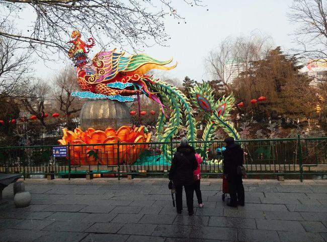 Spring Festival Festive Lantern