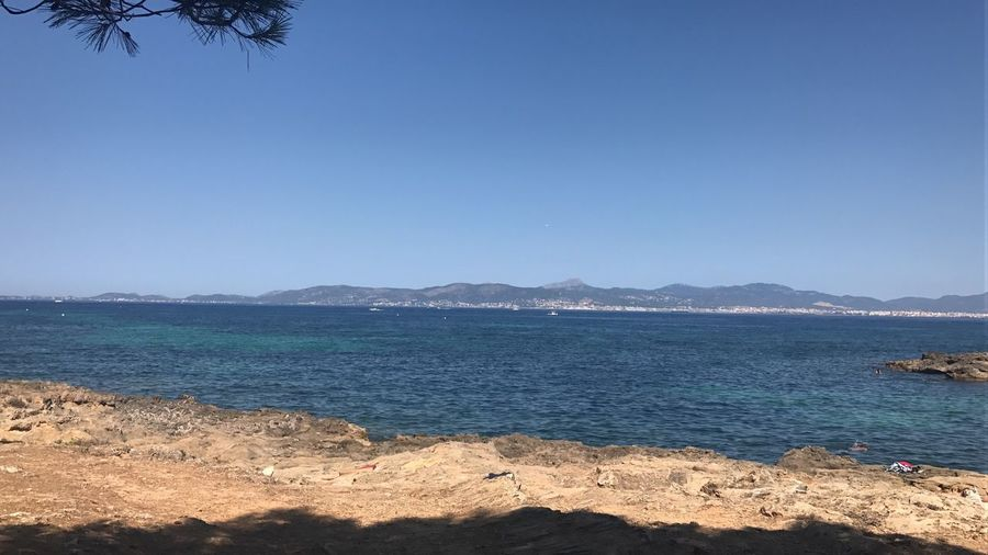 Cala Blava Mallorca Sea Beach Water Scenics Outdoors Nature Beauty In Nature Blue Tranquil Scene Copy Space Day Sand Clear Sky Tranquility No People Mountain Sunlight Wave Tree Sky