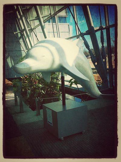 Dolphin Vintage Sculpture
