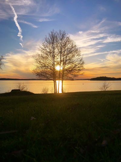Spring Sunsetting EyeEmNewHere Beauty In Nature Stockholm, Sweden Bolinderstrand Järfälla Lakeshore Tree Sky Water Plant Cloud - Sky Land Tree Tranquility Grass Beauty In Nature Horizon Over Water Beach Sunset Nature Horizon EyeEmNewHere