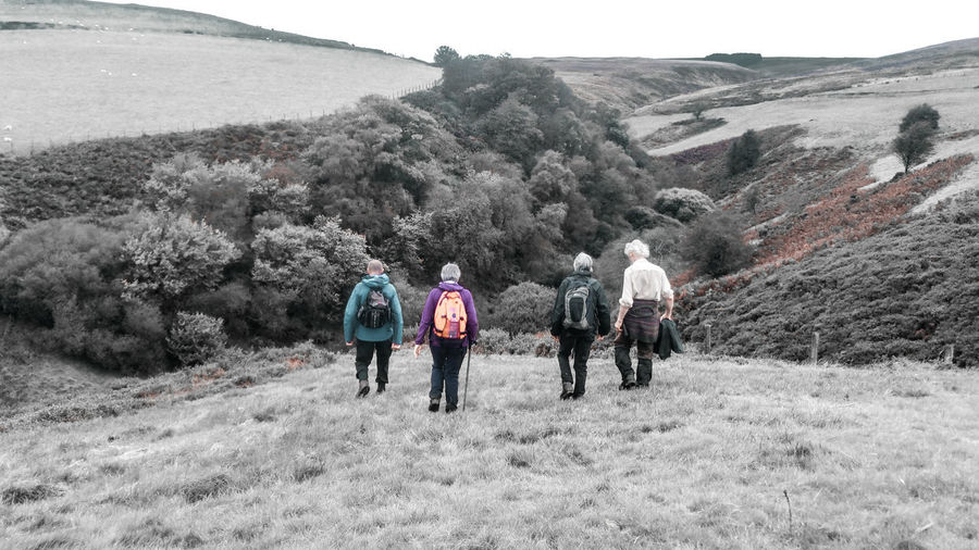 Hiking to the end of the world... Women Female Hiker Elderly Retired Winter Wales UK Rural Scene Countryside Trees Hills Hillwalking Postapocalyptic Survivor Way Forward Men Full Length Mountain Tree Cold Temperature Adventure Snow Sky Hiker Hiking Backpack Pursuit - Concept Explorer Exploration Trail Snowfall