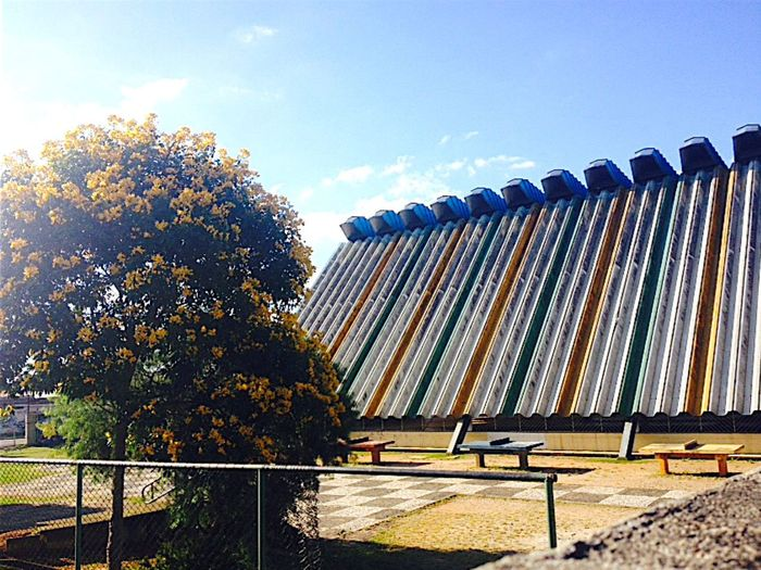 My landscape favorite💛 School Sunday Beatiful Nature Peace Better Tree Flowers