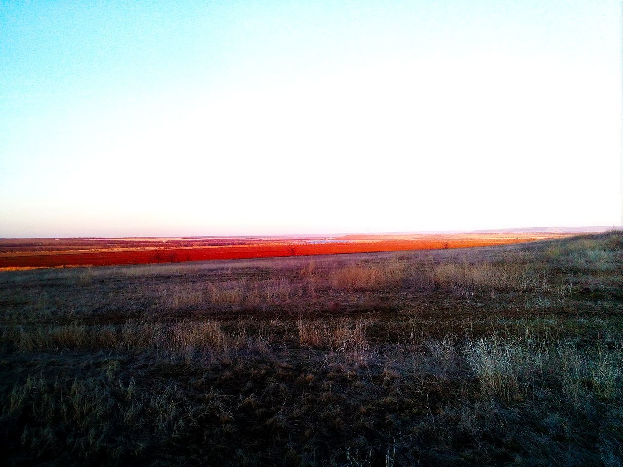 landscape, field, nature, grass, tranquility, outdoors, beauty in nature, scenics, no people, tranquil scene, clear sky, sky, horizon over land, sunset, day, winter, cold temperature, rural scene, dawn