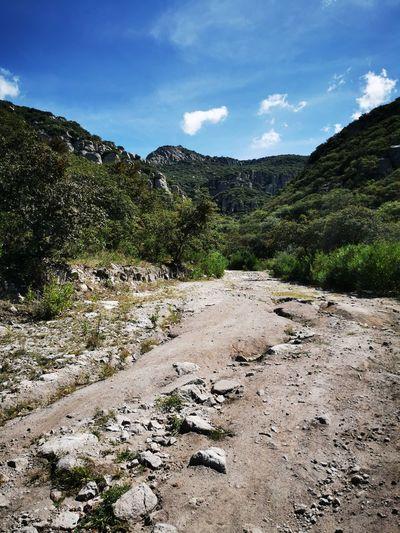 Camino al cañón