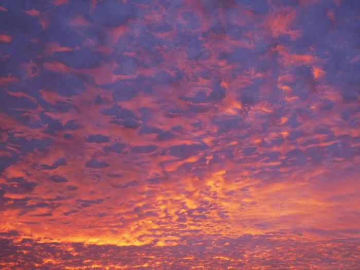 Burning Skies Backgrounds Beauty In Nature Cloud - Sky Dramatic Sky Low Angle View Nature No People Orange Color Outdoors Scenics Sky Sky Only Sunset Tranquil Scene Tranquility