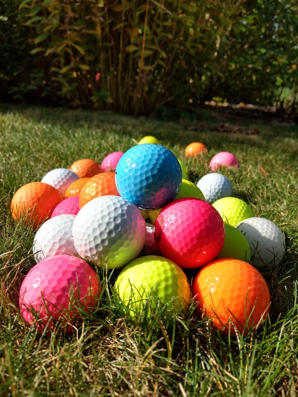 MULTI COLORED BALLS ON GRASS