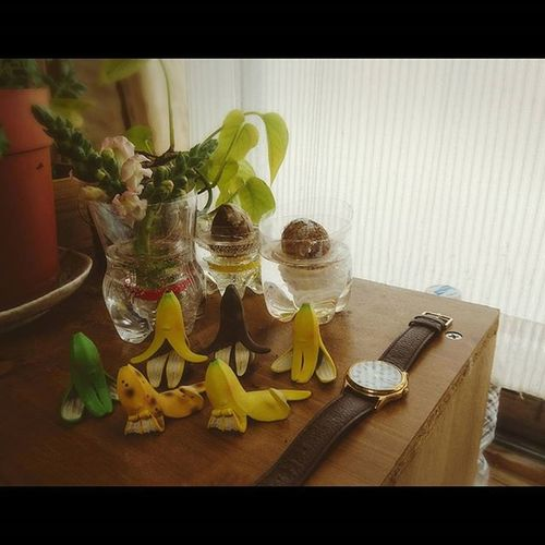 なおphoto バナナ星人達 形見の腕時計 おやすみなさい✨
