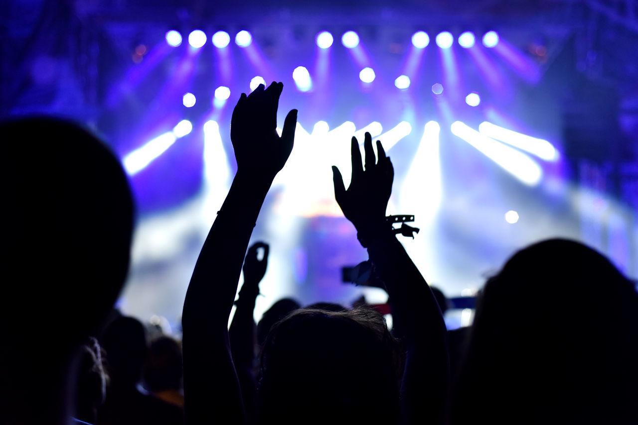 People enjoying at music concert