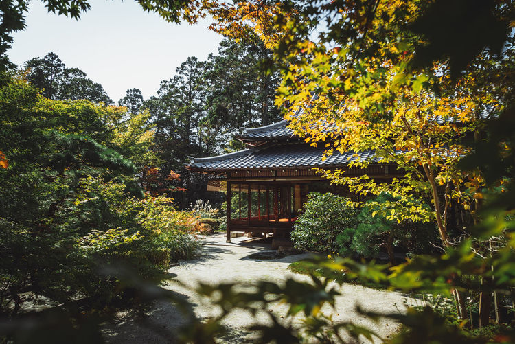 Japan Japanese Gardens Japanese Garden The Traveler - 2018 EyeEm Awards Architecture Belief Building Building Exterior Built Structure Day Growth Japanese House Nature No People Old House Outdoors Place Of Worship Plant Religion Roof Sky Spirituality Temple Tree