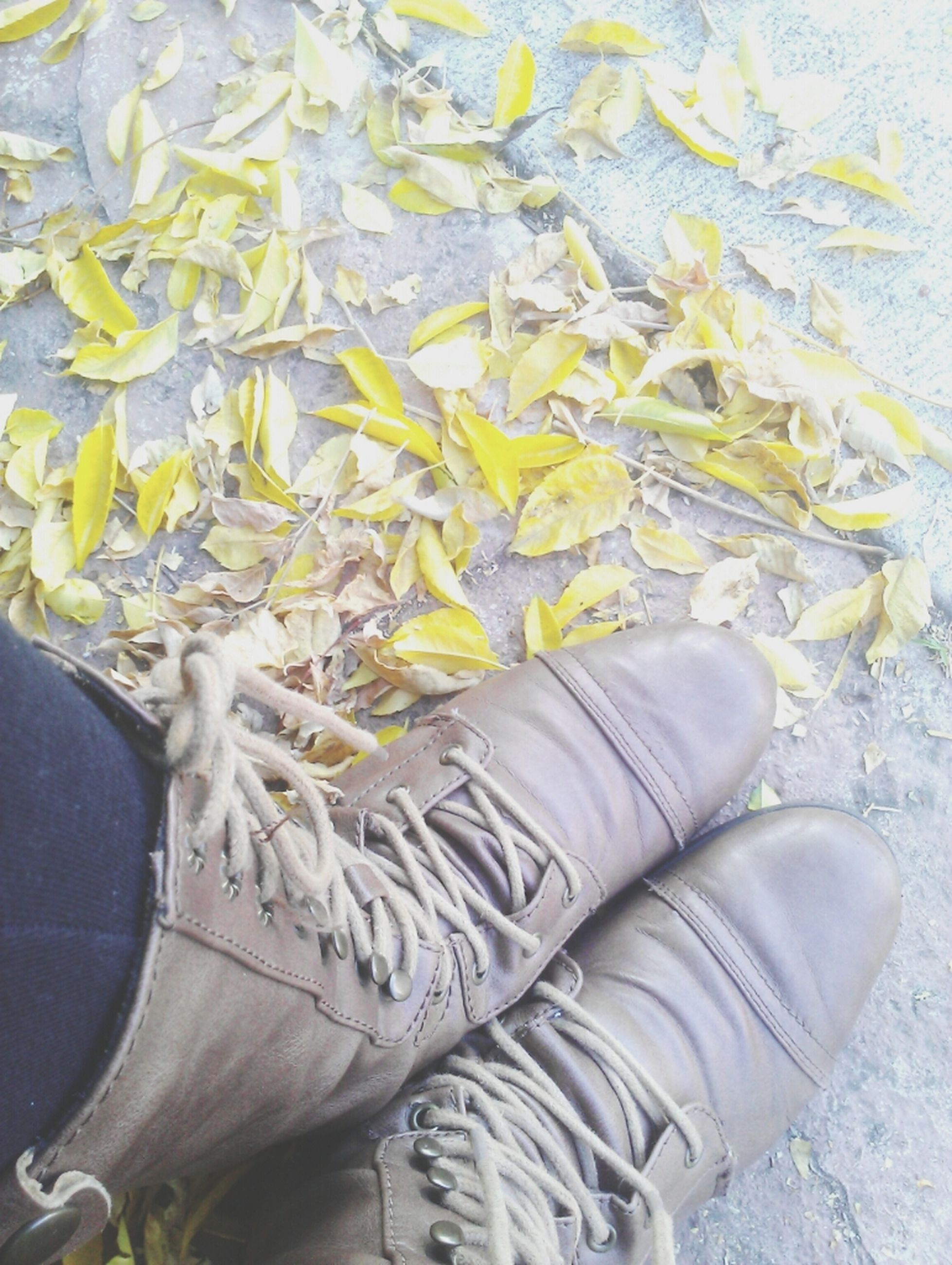 high angle view, shoe, low section, person, personal perspective, footwear, leaf, still life, close-up, directly above, part of, pair, one person, nature, day, yellow, field, autumn, outdoors, dry