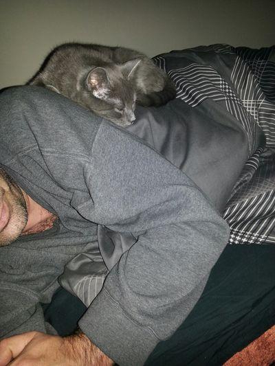 Cat That's Me