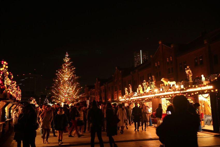 横浜赤レンガ倉庫 Winter2015 Xmas2015 Xmastree