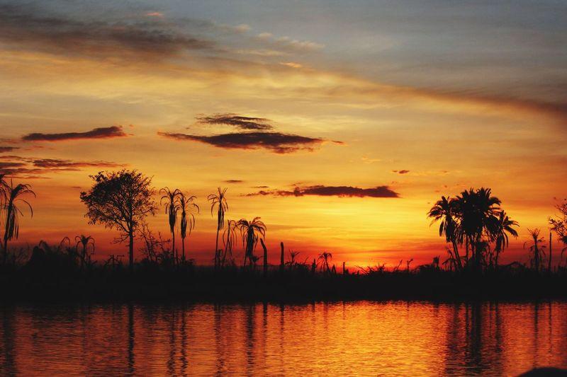 Sunset Sunset Silhouettes Reflection River Sky Silhouette Nature Beauty In Nature Landscape Okavango Delta Botswana Warm Colors African Beauty EyeEm Best Shots - Nature EyeEm Nature Lover EyeEm Best Shots - Sunsets + Sunrise African Abroad EyeEmNewHere